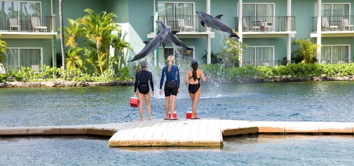amenities-the-kahala-hotel-resort-v341923-720.jpg
