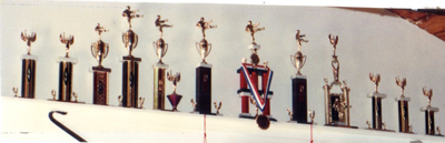 12 of the 24 Trophies that I won while competing in local and national Martial Arts Tournaments (1980-1984)