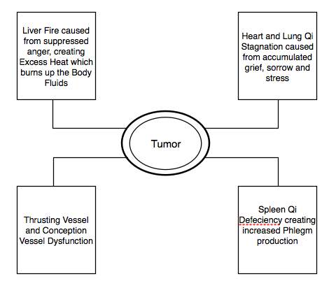 Figure 1.13.  Etiology of an Emotionally Induced, Chronic, Benign Breast Tumor Formation