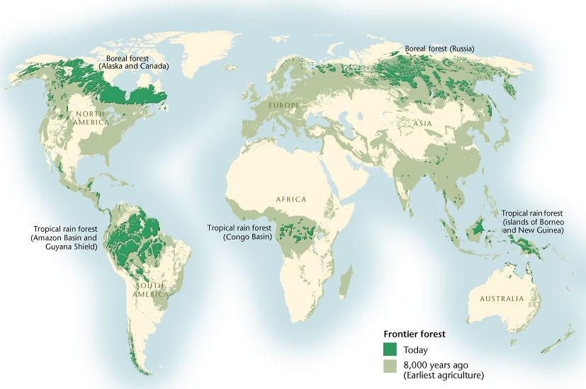Caption: The largest remaining intact forests are found in five regions around the globe. Canada's boreal is the biggest. Credit: Canadian Geographic
