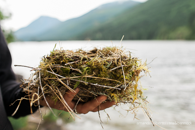 A hand holds a nest in front of a lake