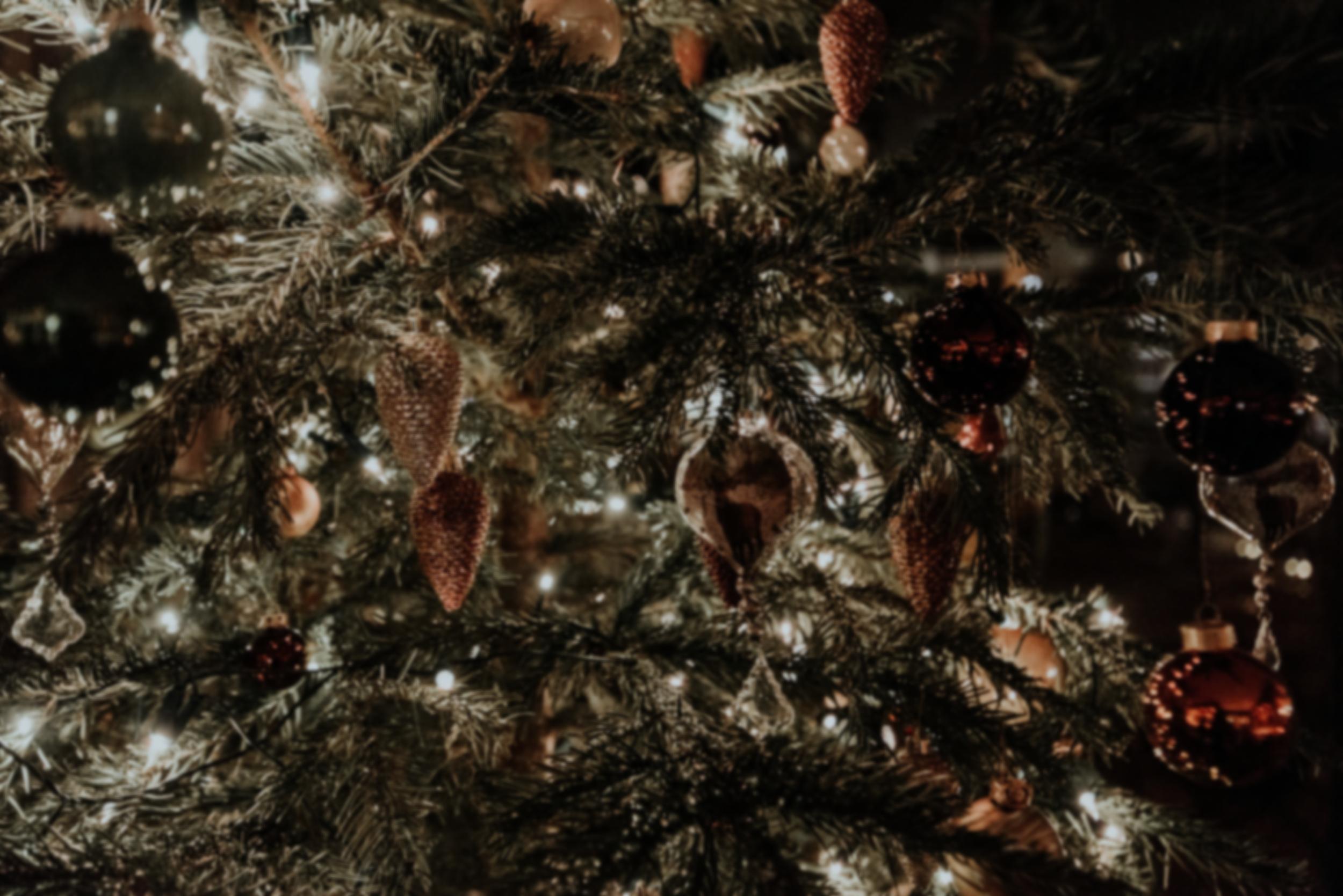 Christmas Eve's Eve - December 23, 5-7 p.m.Providence Academy2788 Carroll Creek Rd.Johnson City, TN 37615