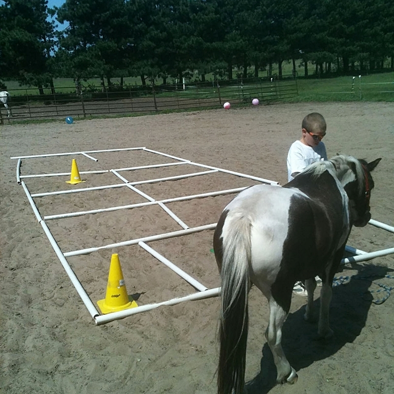 cones-outside-pony.jpg