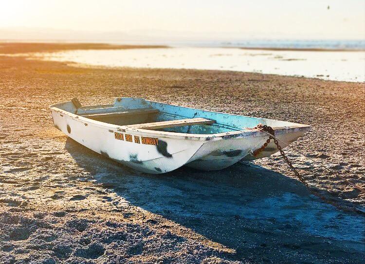 Alone at Salton Sea