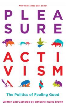 PleasureActivism_sm.jpg