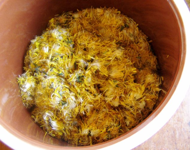 Dandelion petals: If you want yellow fingers but don't smoke...