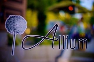 Allium1.jpg