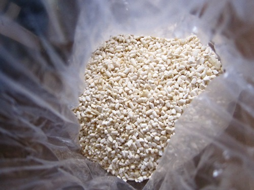 Commercal rice koji. You can also buy other grain koji as well as inoculate your own koji if you buy the mold culture.