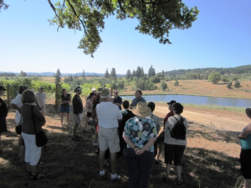 The group taking in the scenery and learning the history of Montinore Estate.