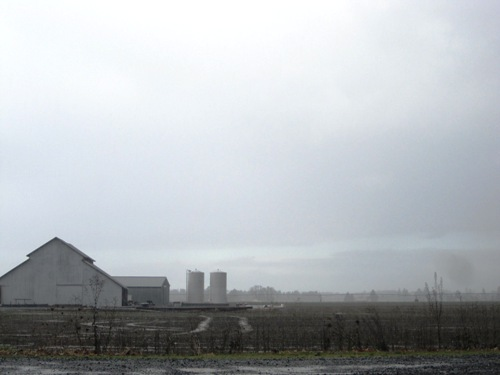 Butler Farms in Stayton, Oregon in December 2010.