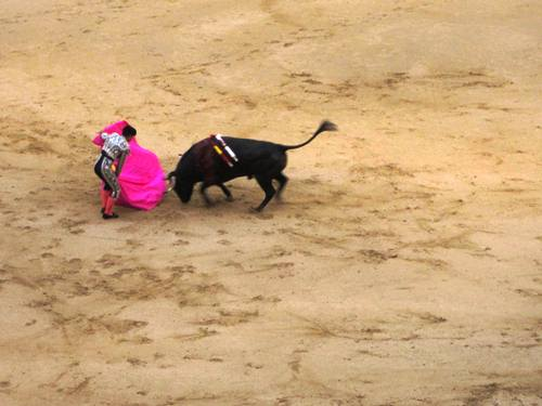 Can't think of a better closing shot for the brave bulls' trip to Madrid.