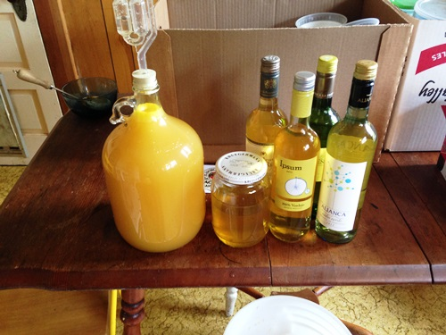 Also bottled last year's dandelion wine and started this year's. Make it every year with my friend Michelle and her daughter...
