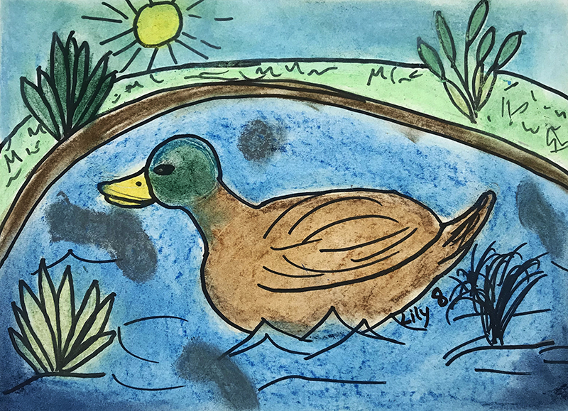 Duck by Lily, age 8
