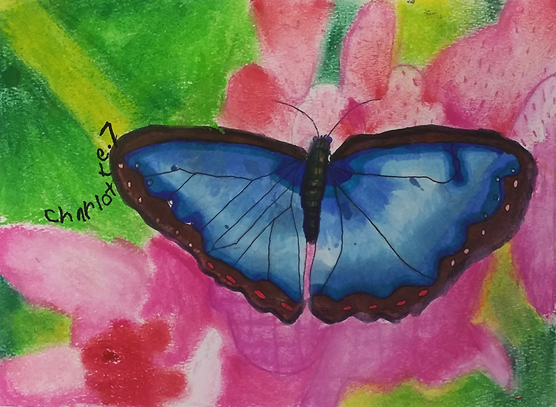 Butterfly by Charlotte, age 7
