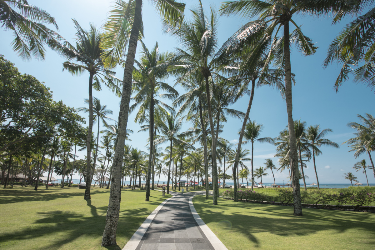 A HAVEN FOR FAMILIES, SET AMONG THE PALM TREES -