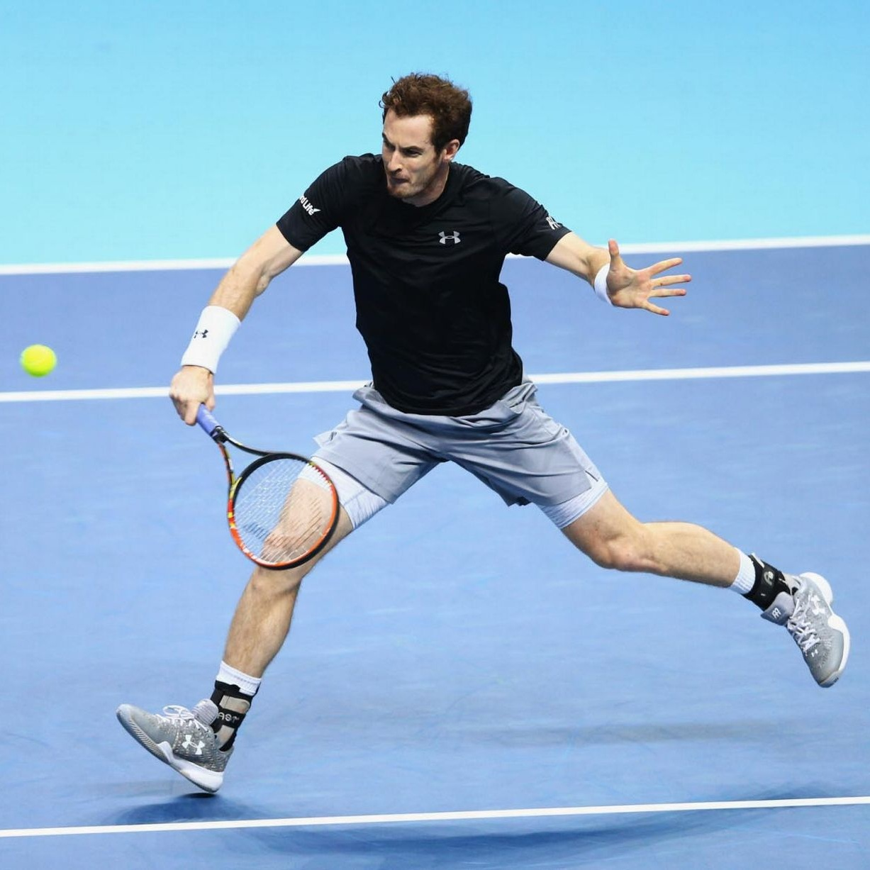 Andy-Murray-David-Ferrer.jpg