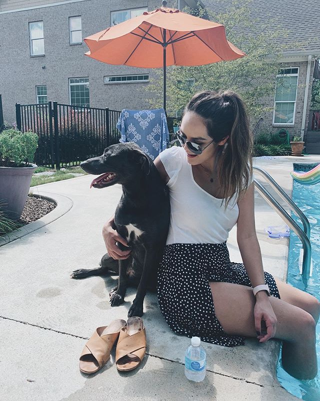 Where you'll find me at any party 🤷🏻♀️😻 . #doglover #dogsofinstagram #mustlovedogs #lulus #madewell
