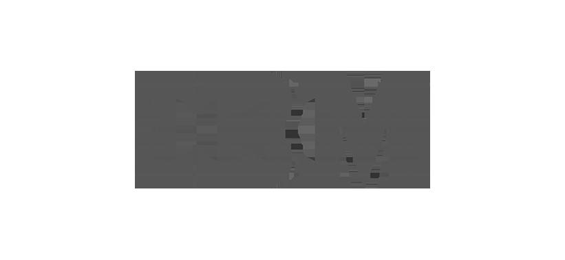 SM_IBM.png
