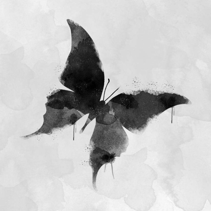 ButteflySplat.jpg