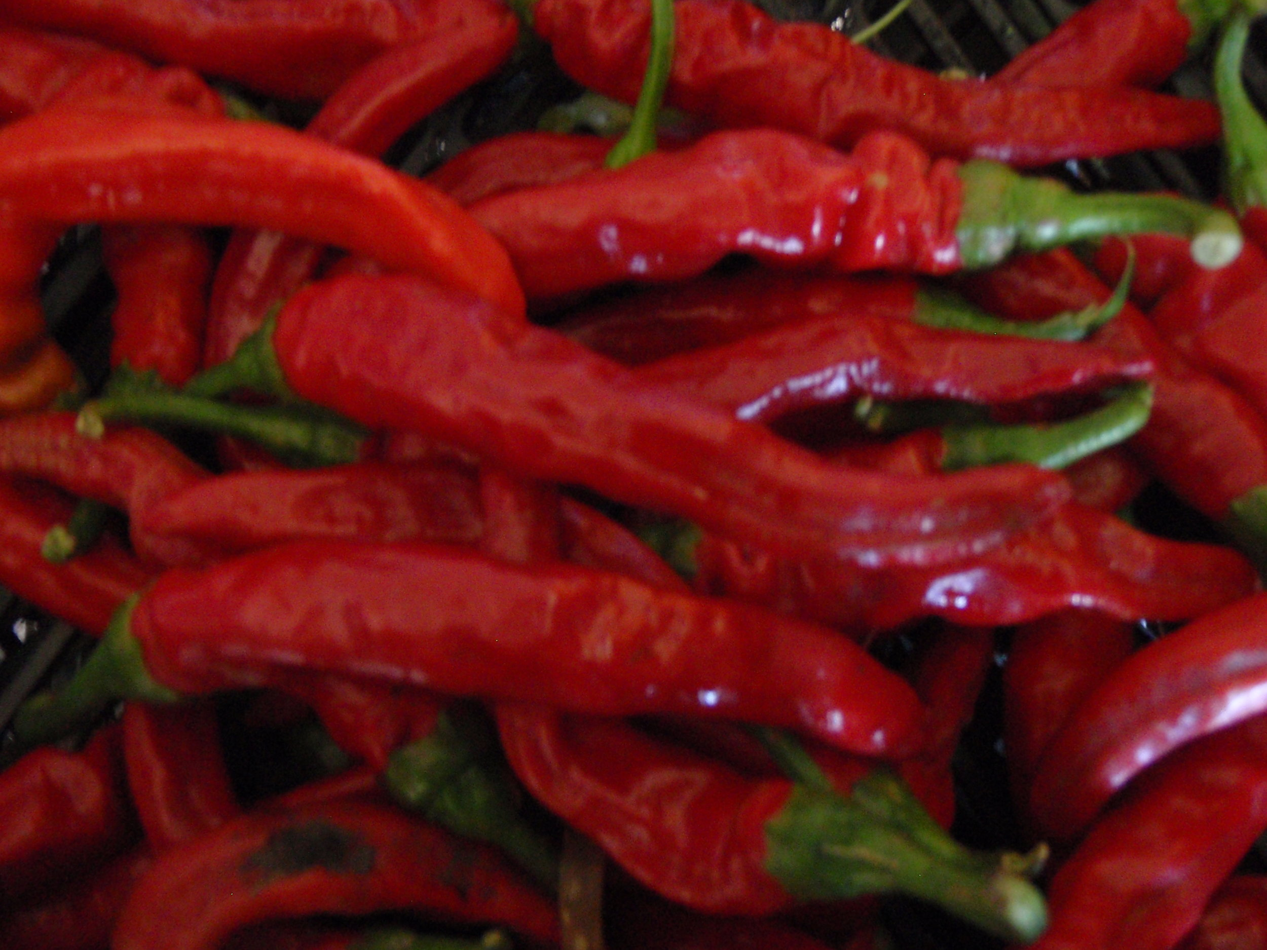 Peppers-Cayenne.JPG