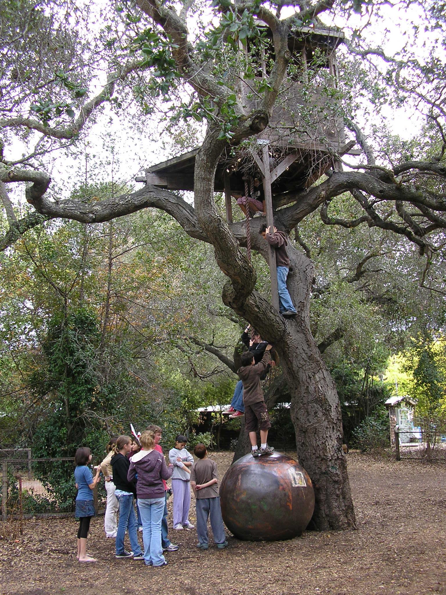 Tree house w:kids.JPG