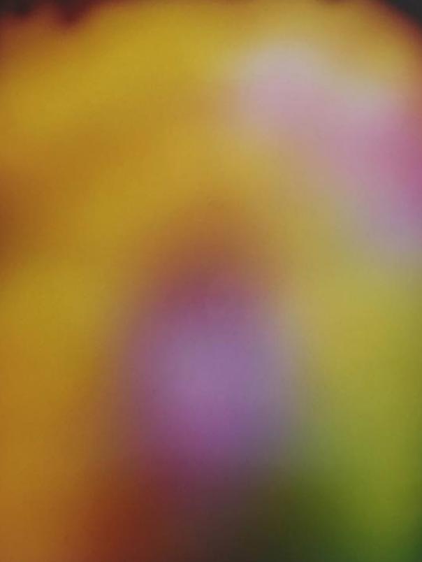 Screen Shot 2018-03-14 at 4.25.27 PM.png
