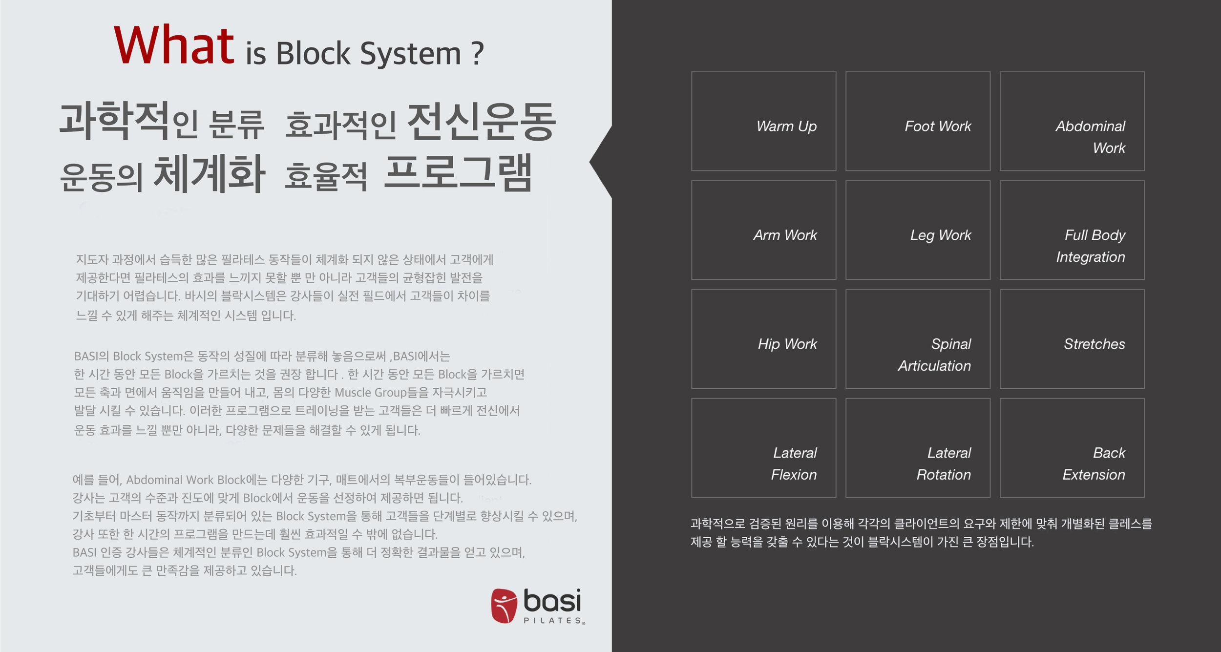 바시블락시스템.jpg