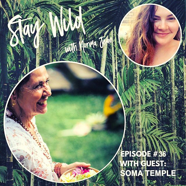 STAY WILD PODCAST is BACK!! 🎉 Boy oh boy has it been a long hiatus- and I'm so excited to be sharing NEW episodes with you little humans! 🙌🏼 This is a VERY special episode with someone I'm in AWE of.. her journey, her grace, her ways of giving back, and her strength as a true spiritual entrepreneur, ✨Soma Temple✨ comes on 🌴Stay Wild🌴 and shares her journey of living in Bali, and starting the 📿Mala 📿revolution with Aum Rudraksha and Bali Malas!  She is one of the PIONEERS of bringing these sacred Hindu prayer beads to the west with the divine guidance of her guru #papaji many years ago in India.  It's an episode close to my heart as we LOVE Soma & Aum Rudraksha and they've come in and offered Mala making workshops at ALL of my Camp Clarity retreats.  It's a special story, and a special company. Definitely not one to miss!! Links in bio and highlights!! You can also find us on #iTunes #applepodcasts #stitcherradio #soundcloud #spotifypodcast And our website www.staywildpodcast.com. . . . . #podcast #podcastepisode #femalepodcasts #staywild #staywildpodcast #femaleentrepreneur #mala #hindu #bali #balilife #expatlife #campclarity #baliretreat #womensretreat #malamaking #malamakingworkshop  #spiritualentrepreneur #aumrudraksha #aumrudrakshadesigns #balimalas @aumrudrakshadesigns  @balimalas108