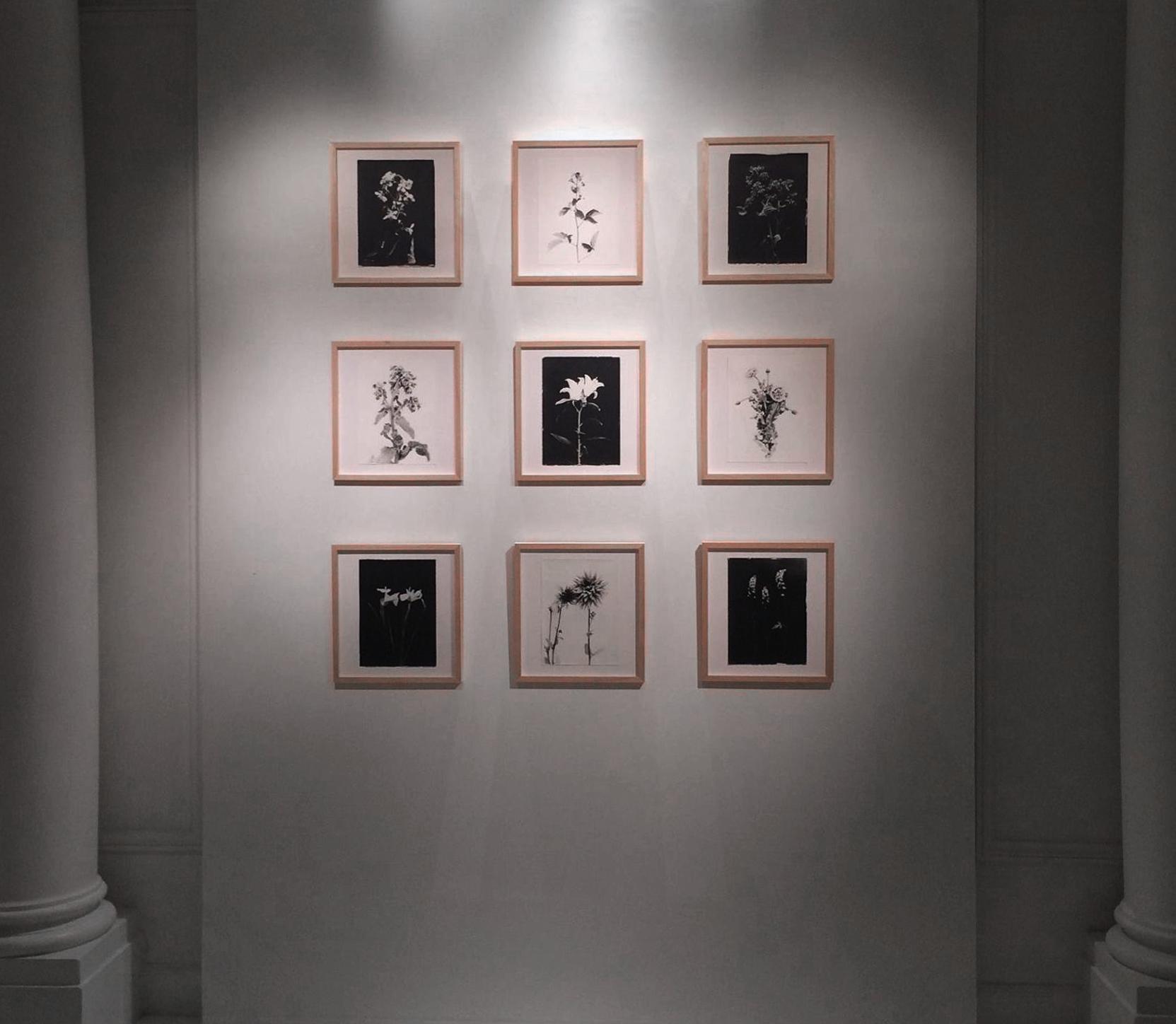 3-Exposition-Blandine-Chambost copy.jpg