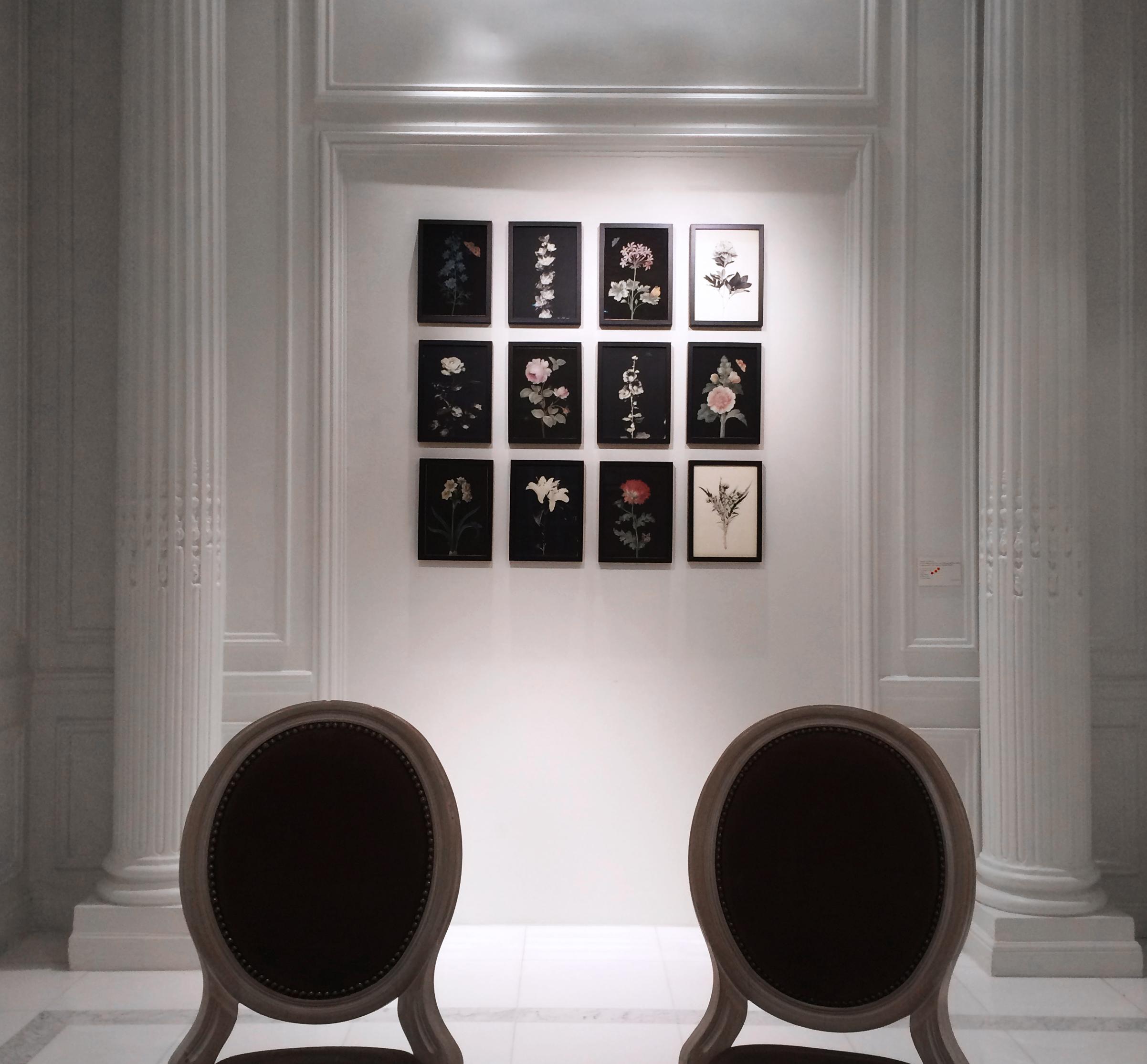 4-Exposition-Blandine-Chambost.jpg