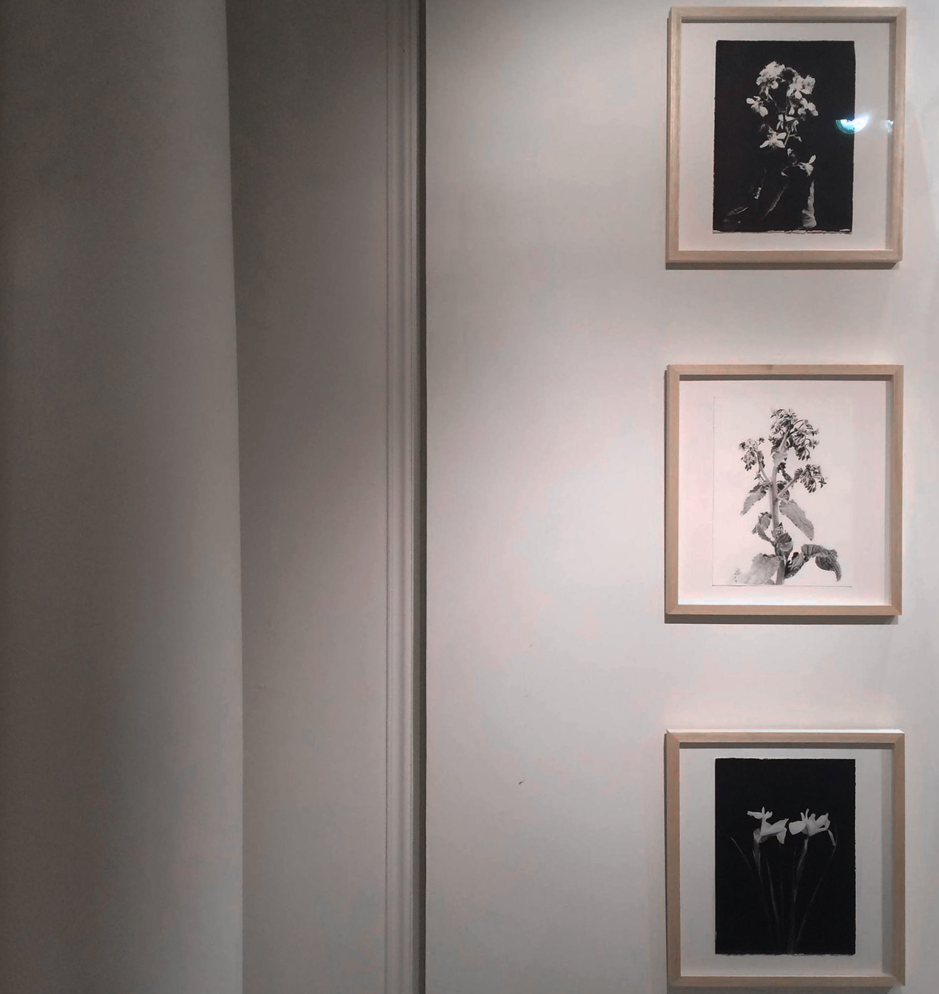 2-Exposition-Blandine-Chambost.jpg