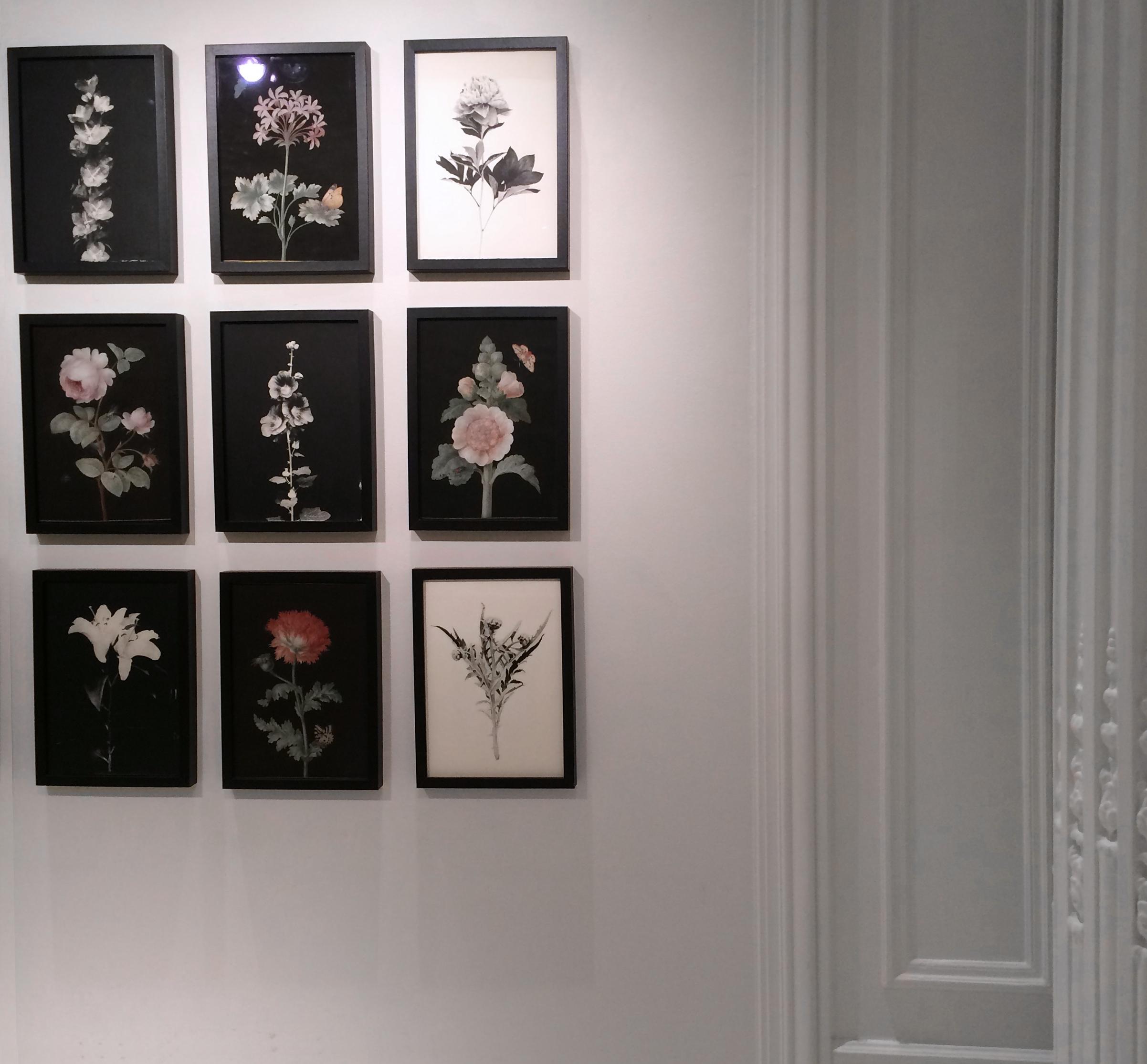 1-Exposition-Blandine-Chambost.jpg