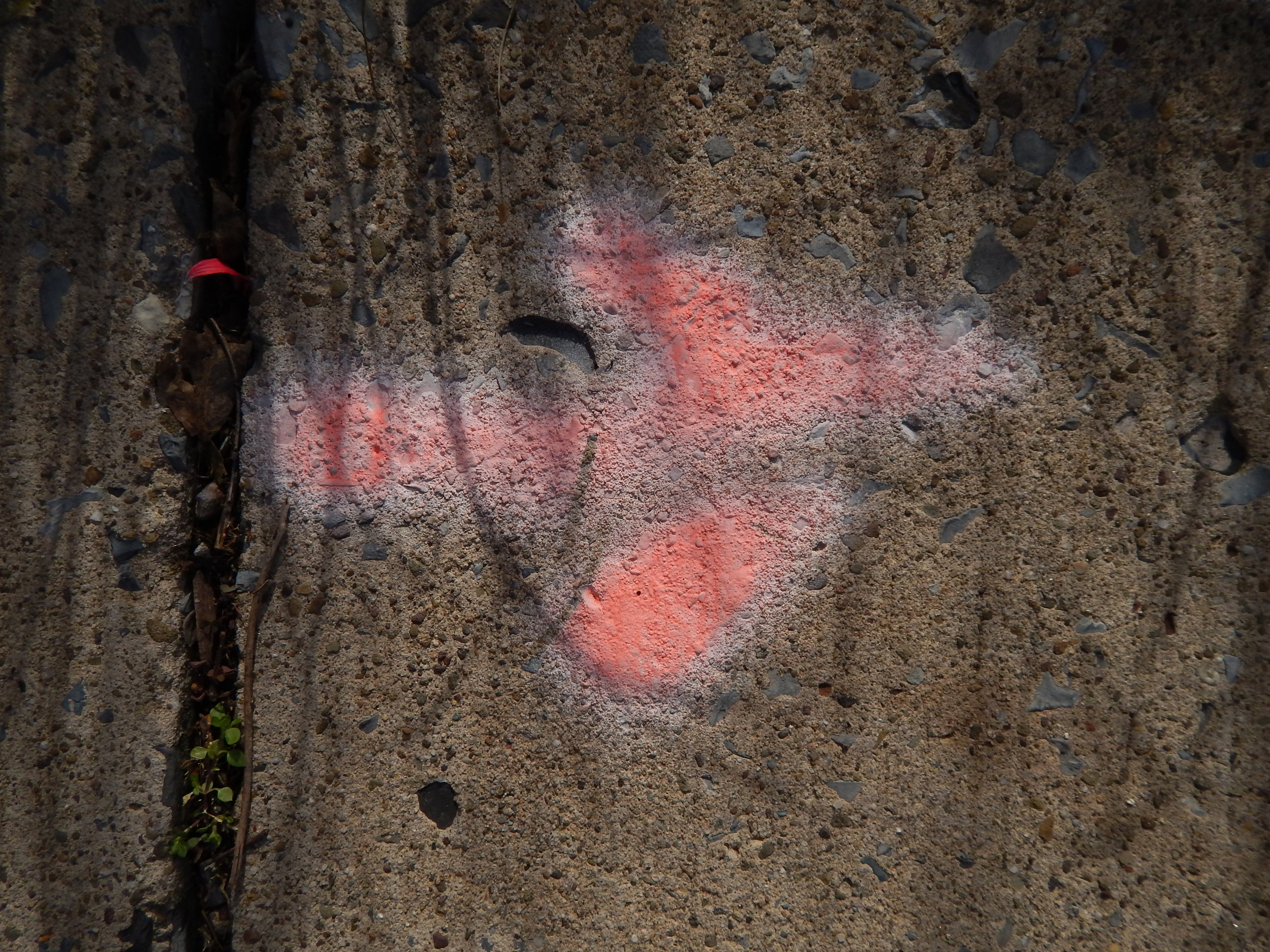 Pink Arrow on Cement.JPG