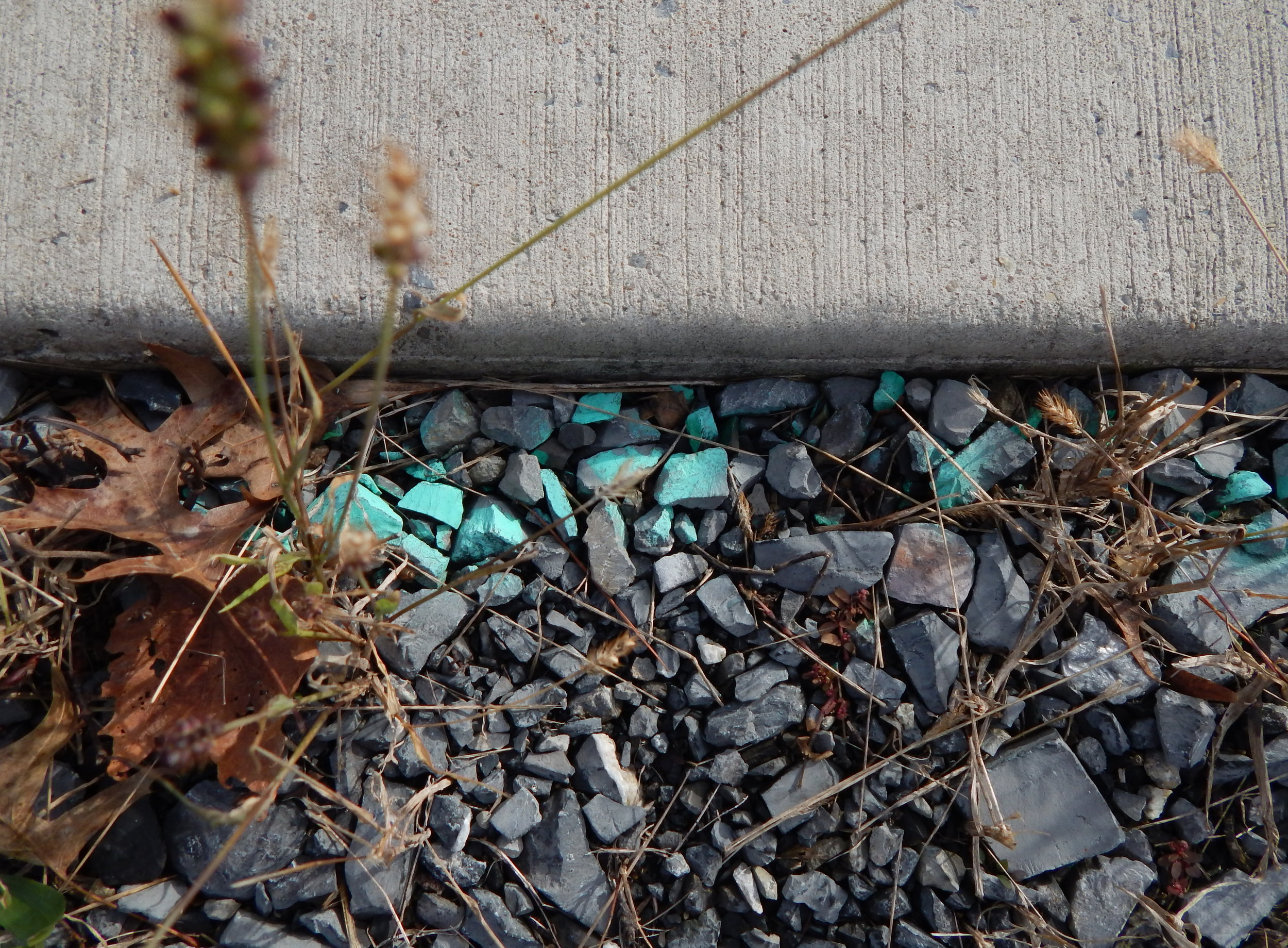 Blue on gravel.JPG