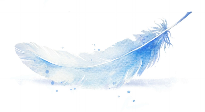 three-watercolour-feathers-blue-lilac-single-right.jpg
