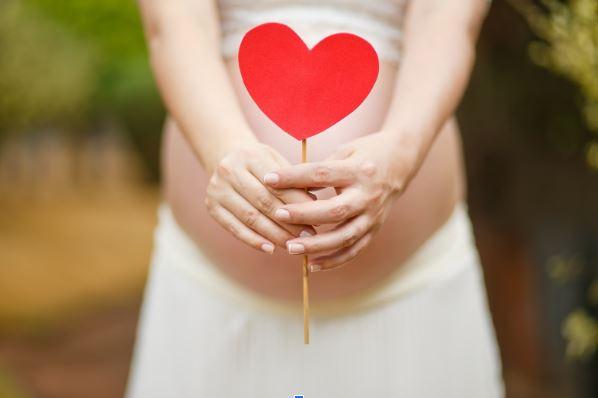 pregnancy stork.JPG
