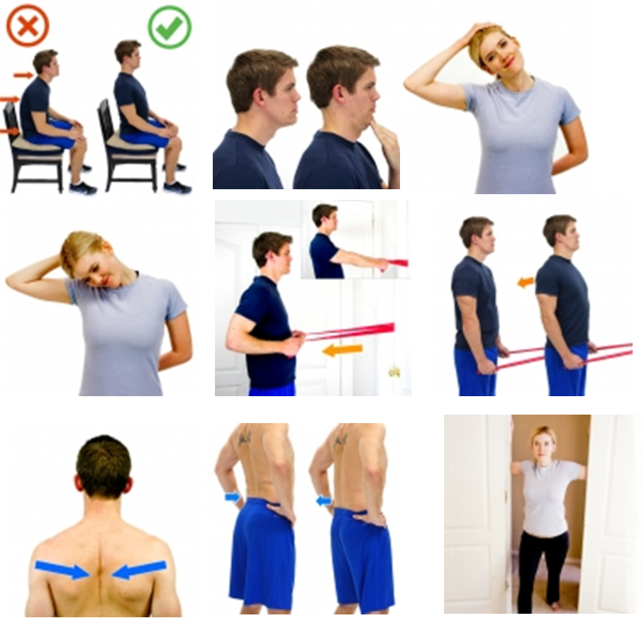 exercises posture.png