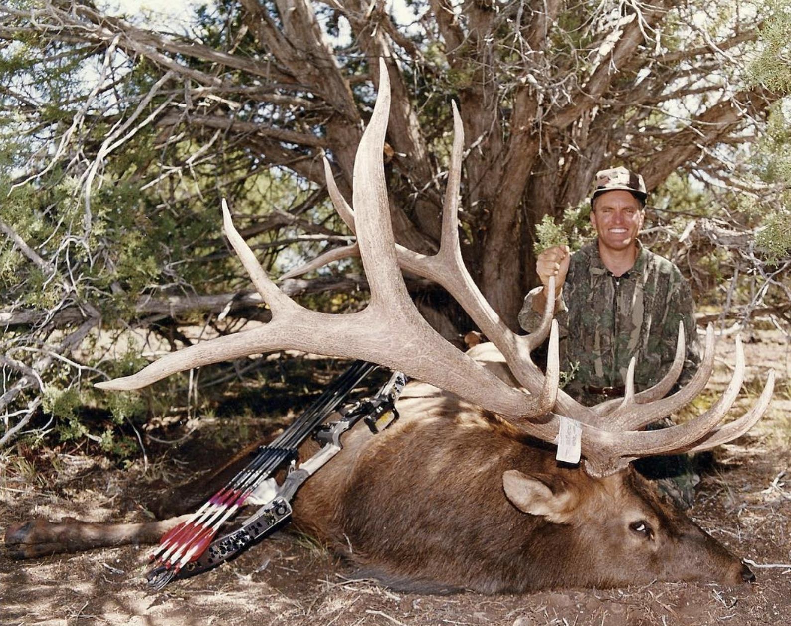 Randy_Ulmer_giant_Elk