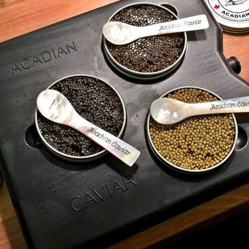 The Acadian Caviar Trio