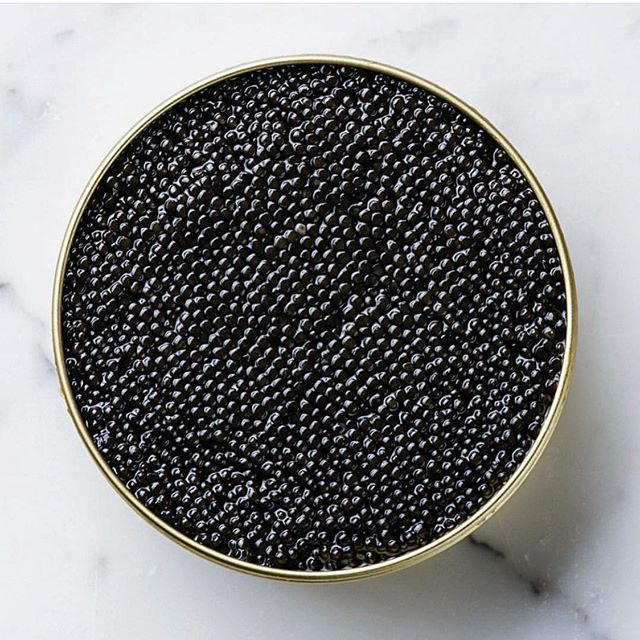 But what exact is caviar...? Caviar is processed and salt cured fish roe. While caviar is often used as a term to describe any fish egg, true caviar comes from sturgeon, native to the Caspian and Black Seas. Varieties of sturgeon include beluga, sevruga and osstreta, and each species produces a slightly different flavored caviar. It's not just Russian aristocracy who made dining on caviar prestigious. Indulging in caviar dates back to ancient Greek and Roman times, followed by Russian Tsars and European royalty. Caviar become more prominent in the North America when sturgeons were discovered in local rivers. Though much of our caviar is still imported, our favourite caviar comes from New Brunswick, Canada.