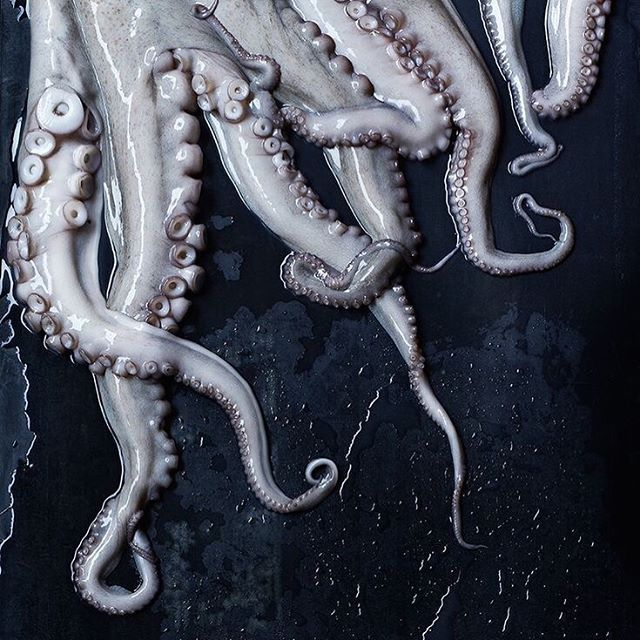 """Octopuses are one of the most intelligent underwater animals and are also erotic muses. Japan's notorious """"tentacle erotica"""" traces back to an 1814 woodblock print titled Tako to Ama, or """"Octopus and the Shell Diver."""" The image is inspired by a legend about a female diver who is chased by octopuses, after these magnificent sea creatures fall in love with her."""