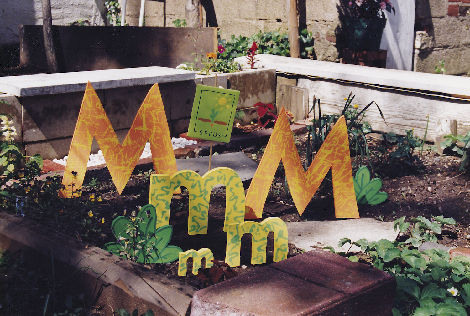 """M""s in the Garden - On Set for ""Sesame Street"""