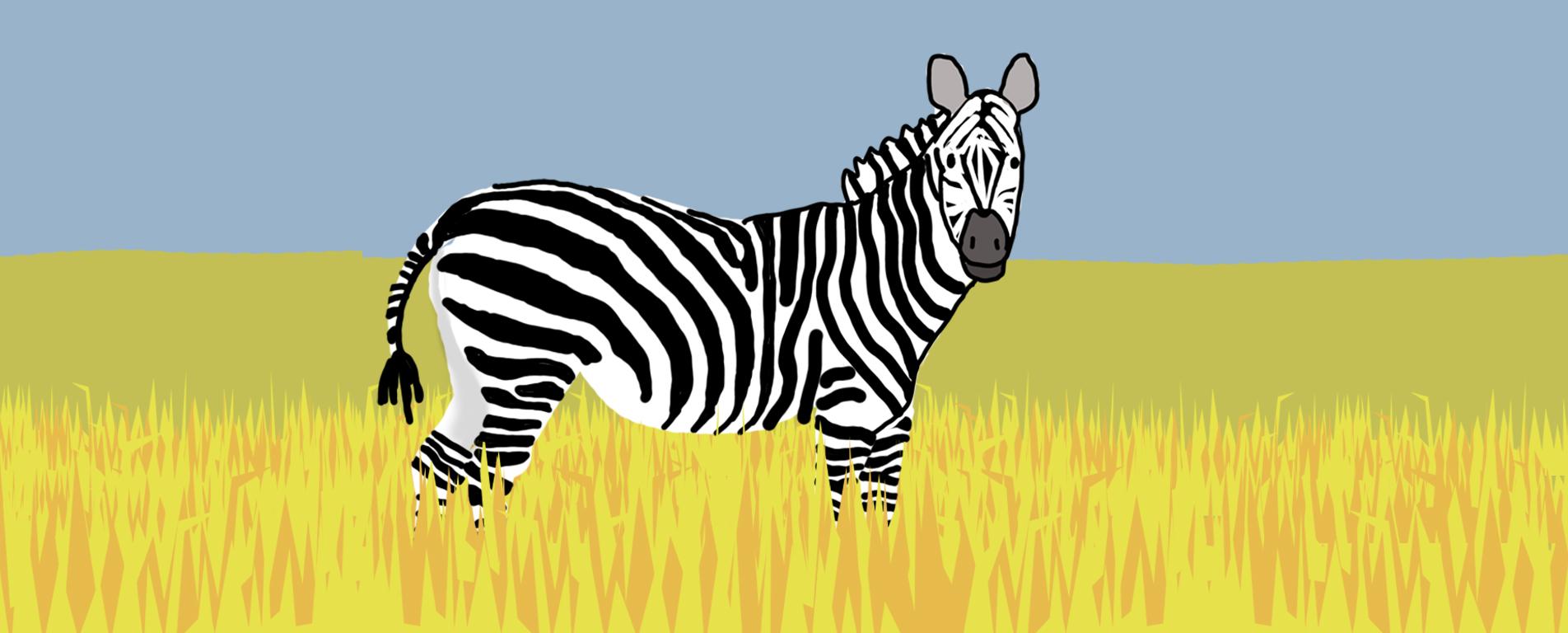 Zebra by Jane Aaron