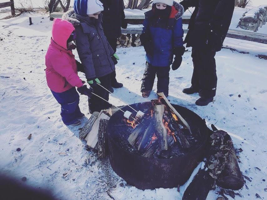 Marshmellows roasting on an open fire