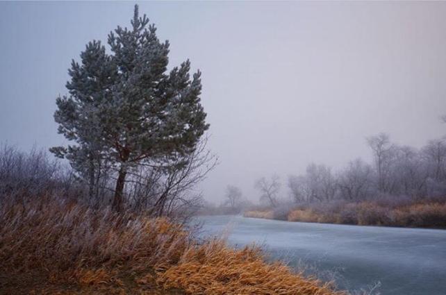 River Fog  by Chad Klyne