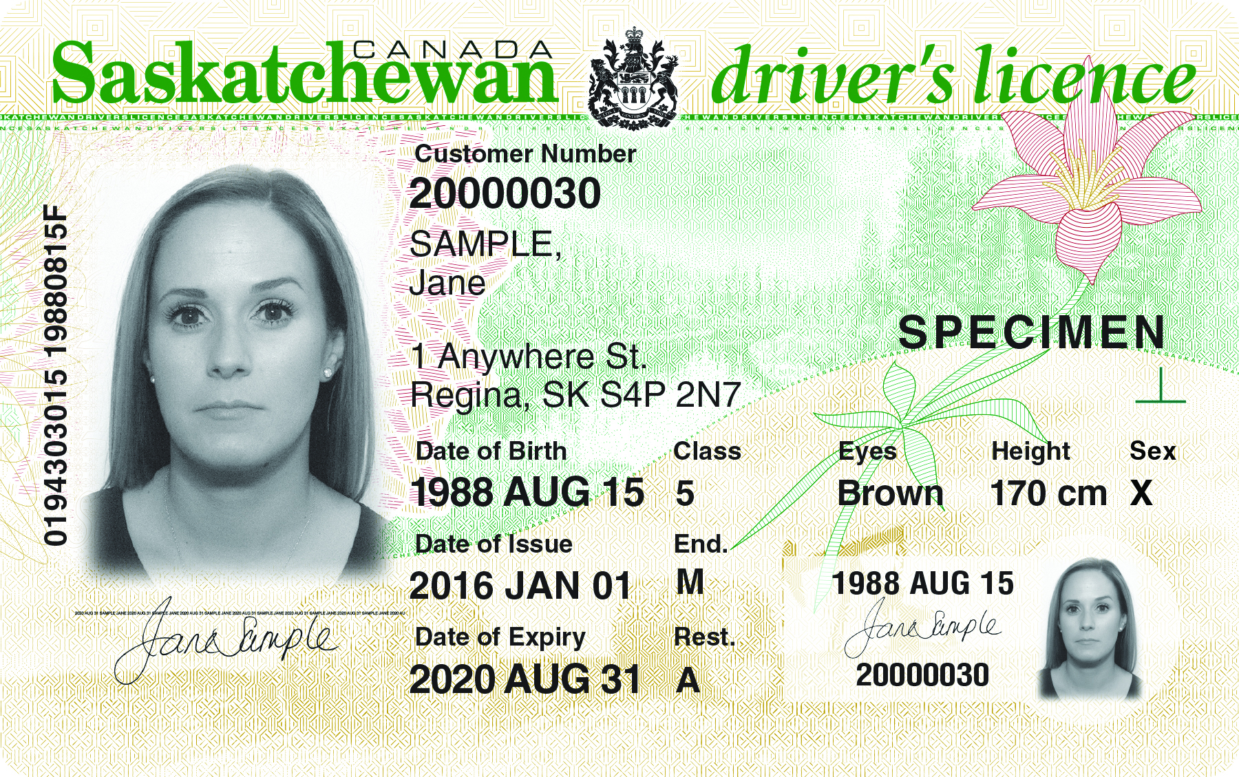 Example of the new SGI X designation on driver's licenses and photo ID