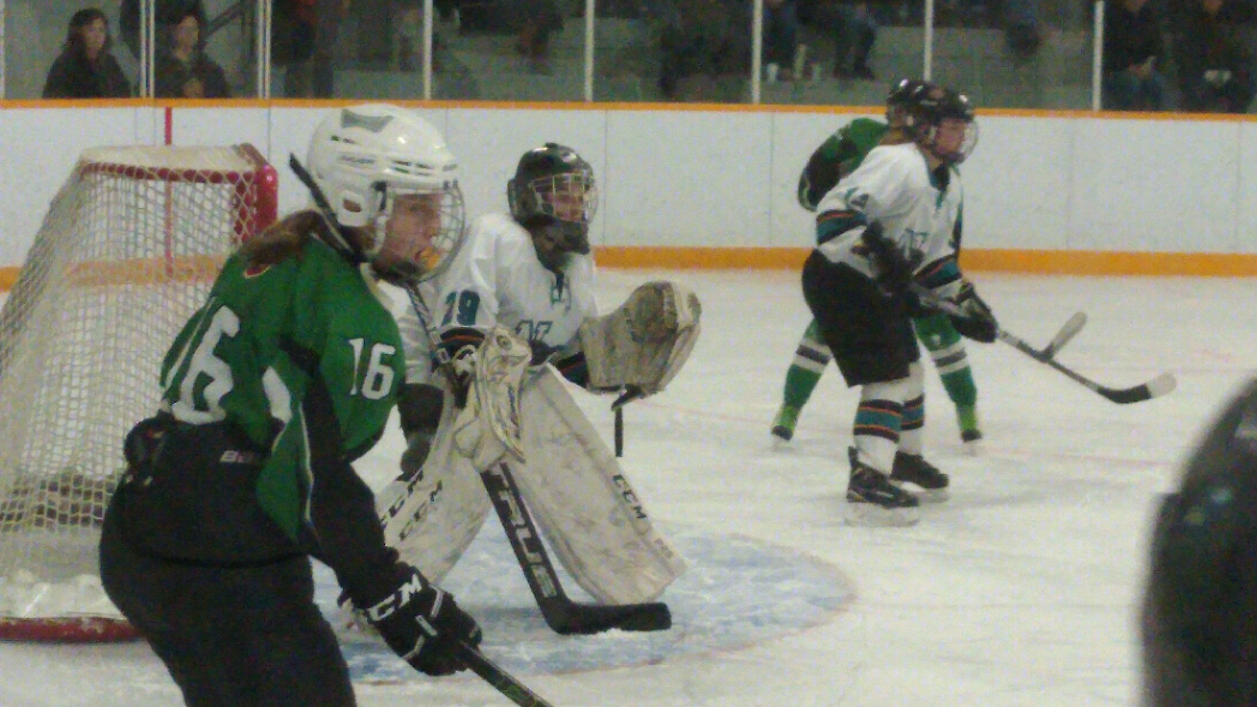 Action From The Turtleford Game
