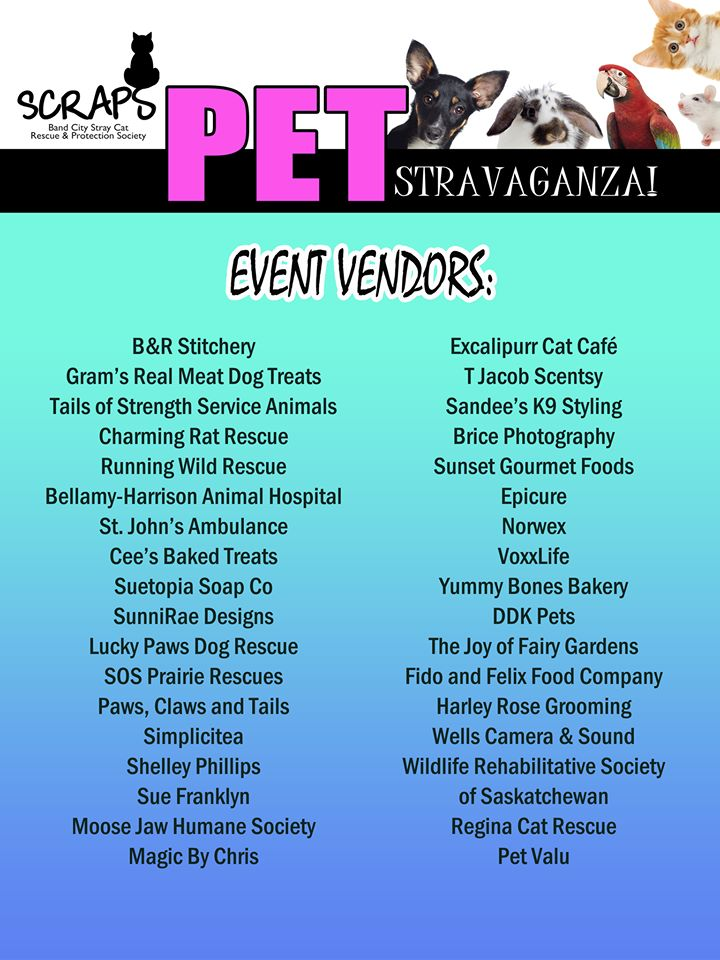 PETstravaganza This Saturday — MJ Independent