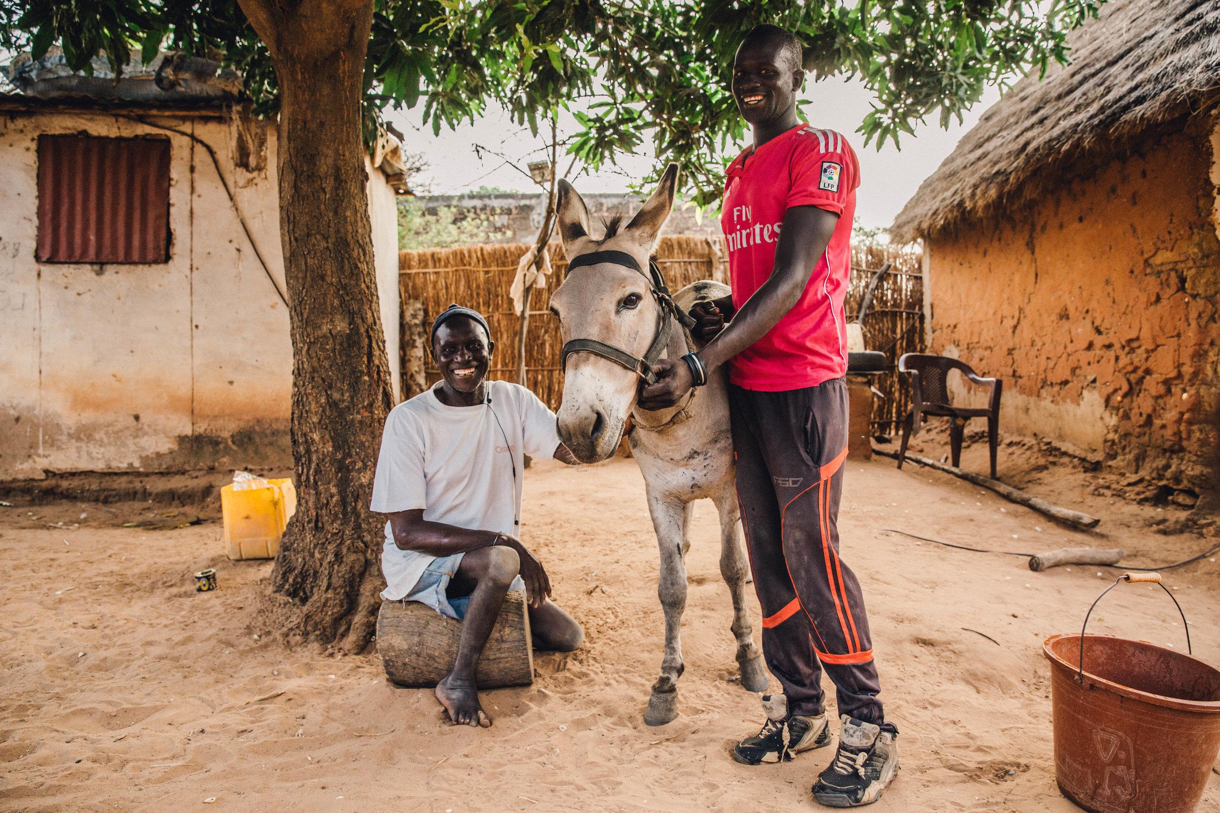 FDowson.Senegal-1331.JPG
