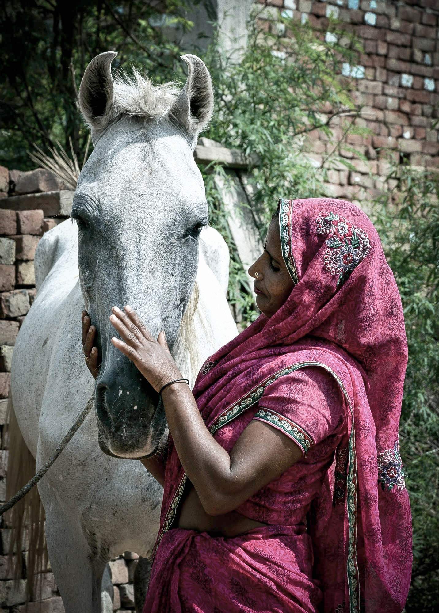 Horse and woman in India.jpg